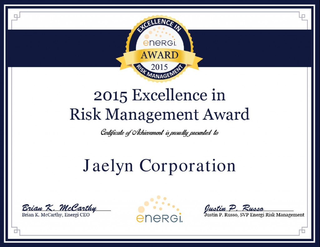 Jaelyn Corporation-2015 Excellence